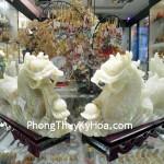 rong-cam-thach-nam-lon01